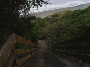Jinzun Steps