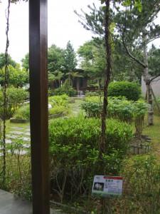 (Edible) Herb Garden