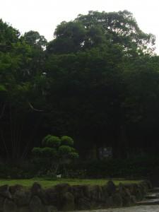 Yuanshan